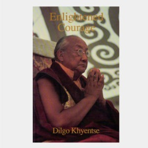 L033 - Enlightened Courage